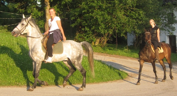 horseback riding austria